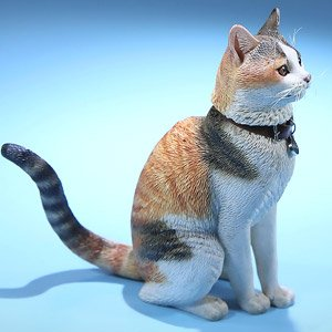 Felis Catus (Felis Domesticus) FC004 (Fashion Doll)