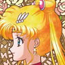 SAILOR MOON (Anime Toy)