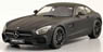 Mercedes-Benz AMG GT (Matt Black) Resin Model (Diecast Car)